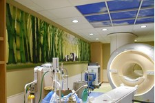 - Image360-Plymouth-WallMurals&WallPaper-HealthCare (2)